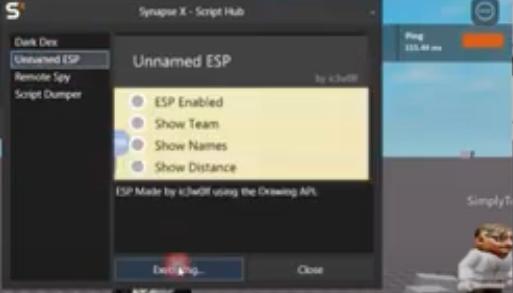 Synapse X Exploit